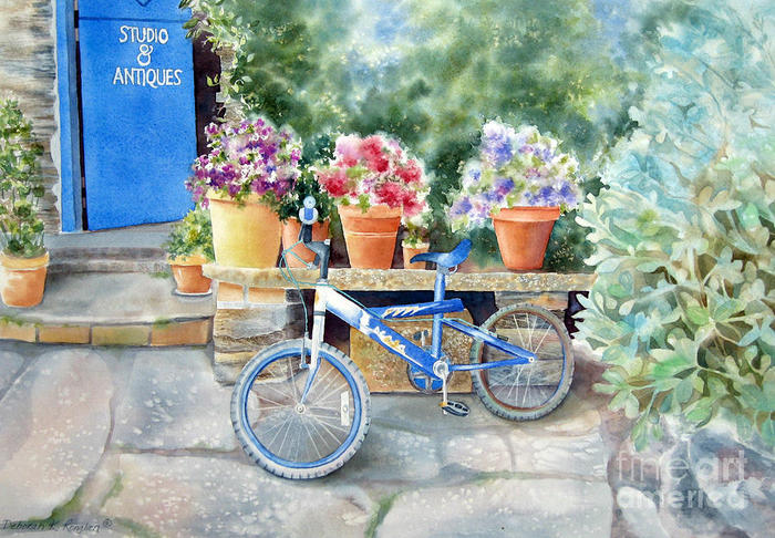the-blue-bicycle-deborah-ronglien (700x486, 99Kb)