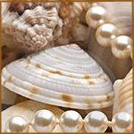 Копия Копия seashell-background-with-pearls-thumb7714678 (150x150, 7Kb)