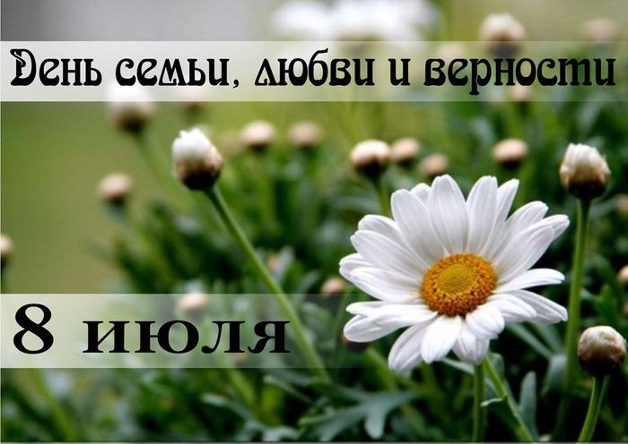 1234664_8_iulya_2012 (700x496, 99Kb)