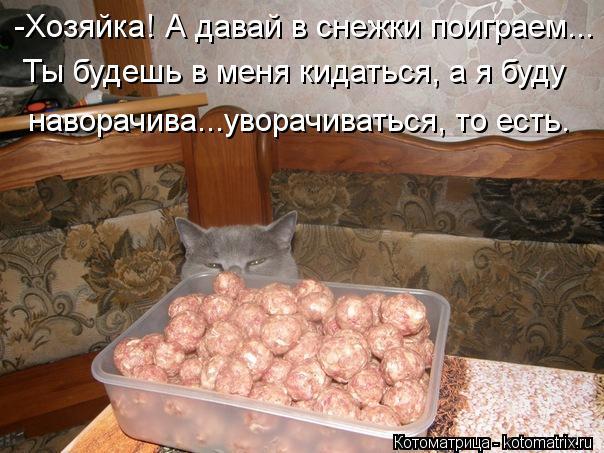 Котоматрица-2012. Выпуск 31 kotomatritsa_7o (604x453, 62Kb)
