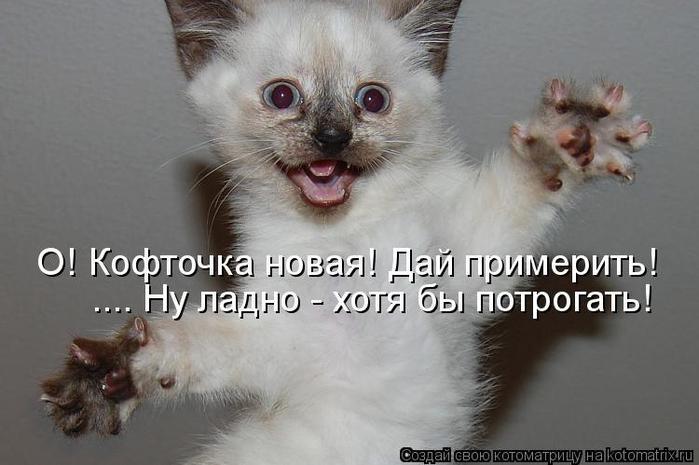 Котоматрица-2012. Выпуск 31 kotomatritsa_KJ (700x465, 43Kb)