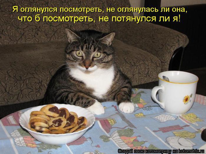 Котоматрица-2012. Выпуск 31 kotomatritsa_O (700x524, 66Kb)