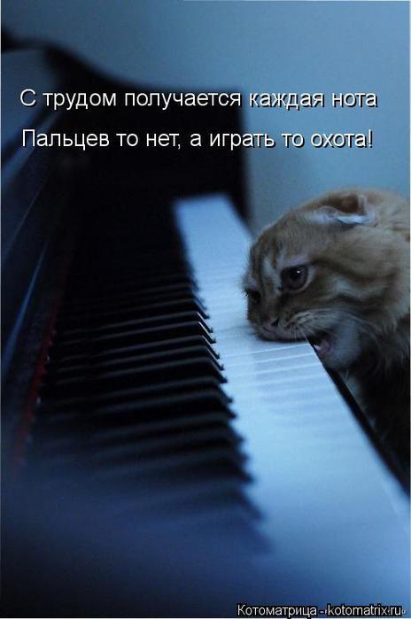 Котоматрица-2012. Выпуск 31 kotomatritsa_P3 (464x700, 32Kb)