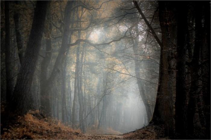 Сказочные фото-пейзажи от Nicolas LB 17 (700x467, 71Kb)