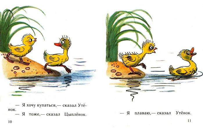 иллюстрации к сказке сутеева утенок и цыпленок таких