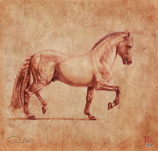 tomasz_rut_equus_2_full (525x500, 141Kb)