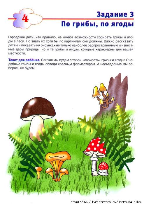 пузырьковых задание грибы картинки этого