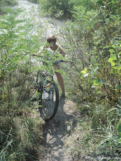 велопрогулка киев парк дружбы народов