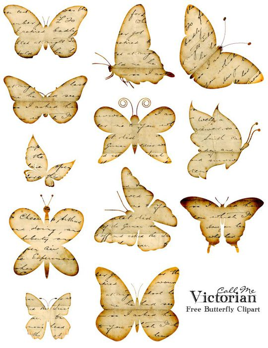 free-butterfly-clipart (540x700, 71Kb)