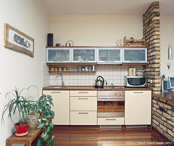 Kitchen_Design_Small_Apartment_Kitchen_Designs_Ideas (590x497, 194Kb)