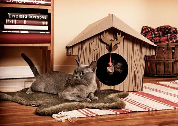 Креативные дома для котов16 (600x425, 51Kb)
