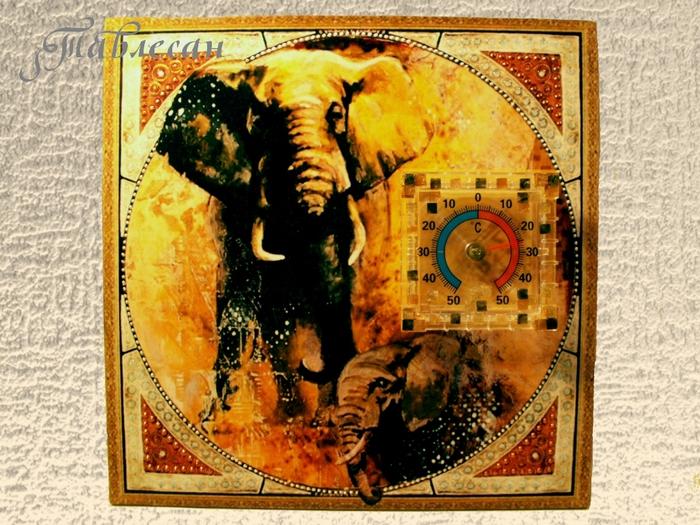 территорию ранней круглые картинки африка оазисы