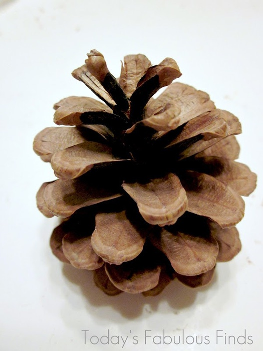 Pine Cone Wreath_6002 (525x700, 81Kb)