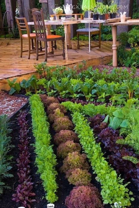 Картинки сада и огорода своими руками картинки