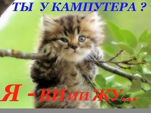 http://img1.liveinternet.ru/images/attach/c/6/93/609/93609249_getImage__1_.jpg