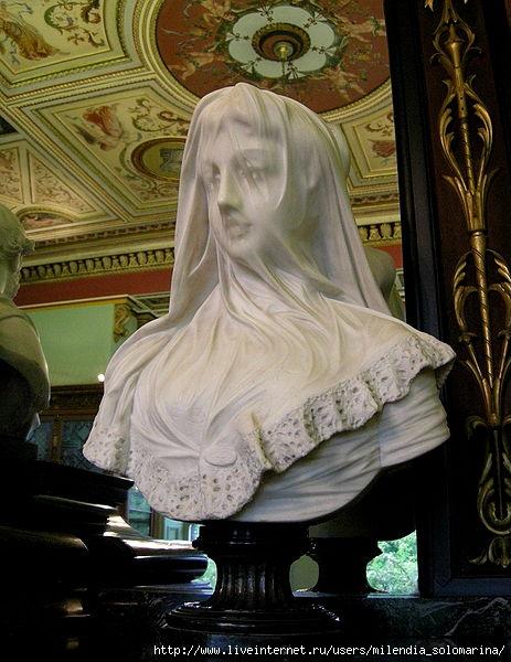 Женщина в вуали картинки