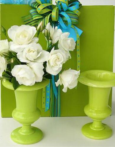 color-chartreuse-green1 (500x600, 51Kb)