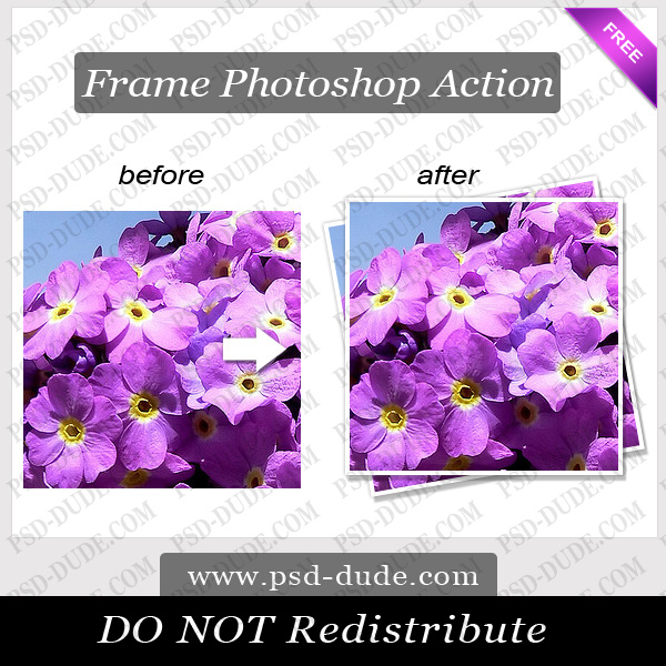 Photoshop Frame Action (600x600, 346Kb)