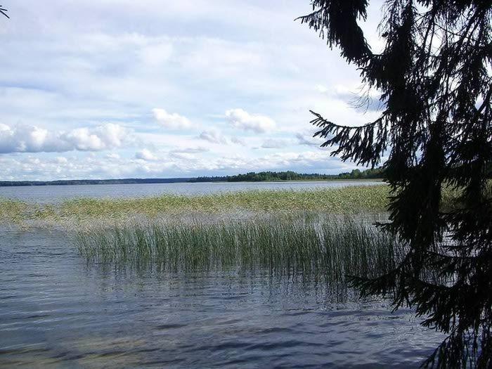 Озеро Ужин окрестности