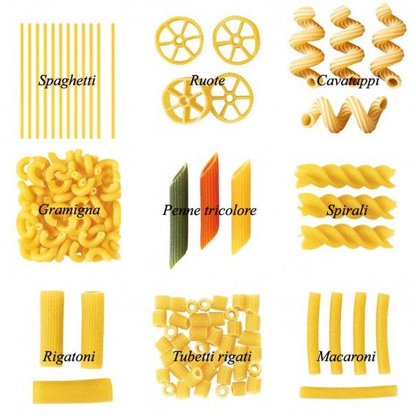 виды макарон с картинками спереди х-трейла
