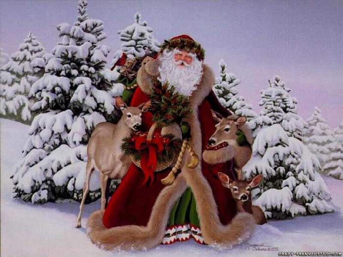 santa-claus-in-forest-1600x1200 (700x525, 345Kb)