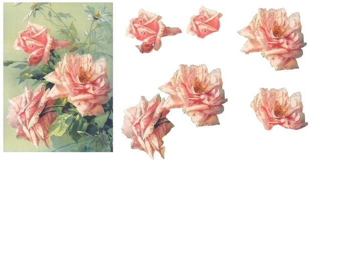 rose rose (700x525, 129Kb)