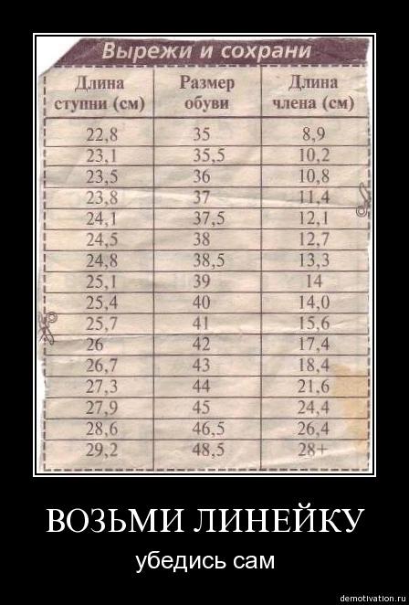 Средняя длина полового члена — pic 11
