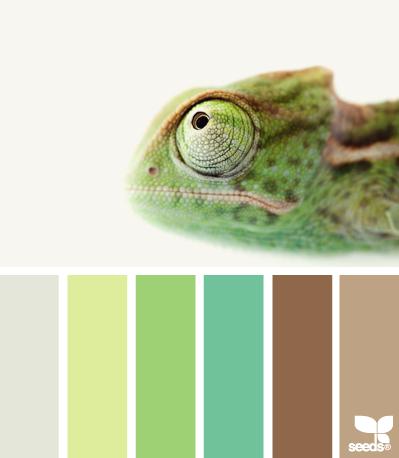 ColorProfile (399x458, 88Kb)