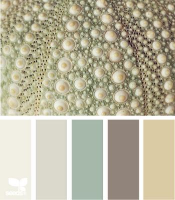 June 1 Design Seeds Image Urchin tones (349x400, 204Kb)