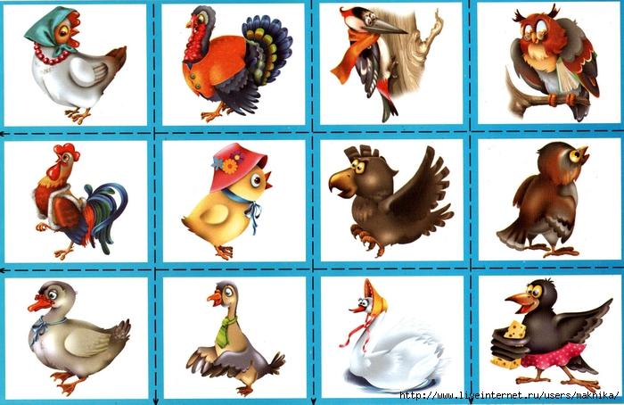 картинки животных и птиц для доу клиента