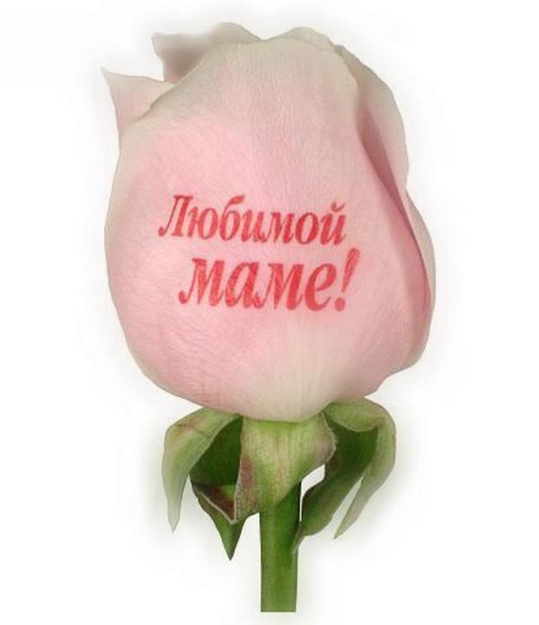 Символов, надпись на открытке в цветах для мамы