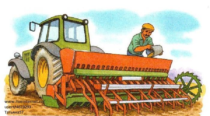 Поле пшеницы раскраска 1