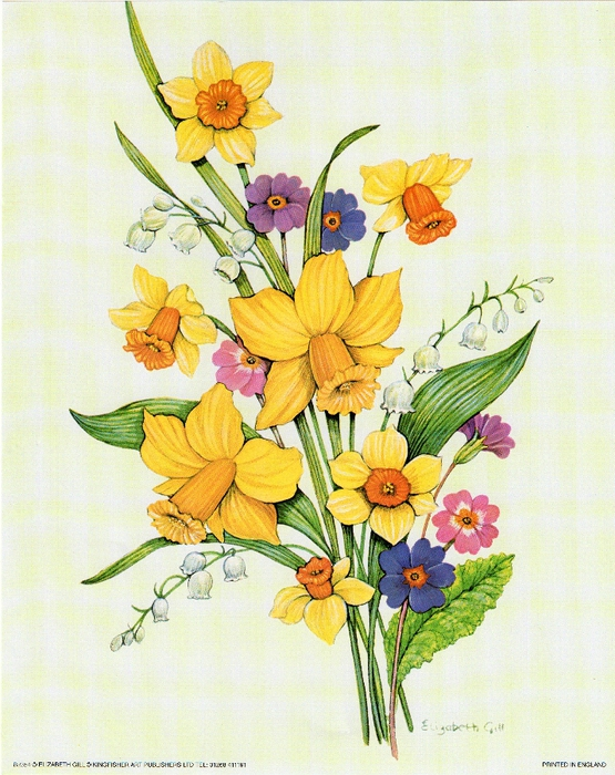 daffs plus (555x700, 344Kb)
