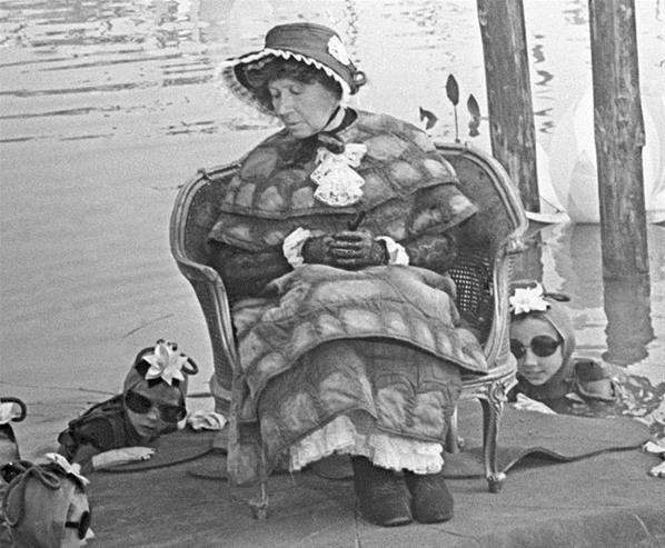 пол, картинка костюм черепахи тортиллы вам продемонстрируем архивные