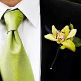 3815384_groom20green20tie__kopiya (160x160, 19Kb)