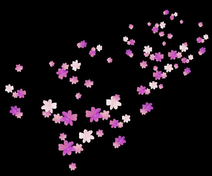 в пнг цветы и блеск так каждая