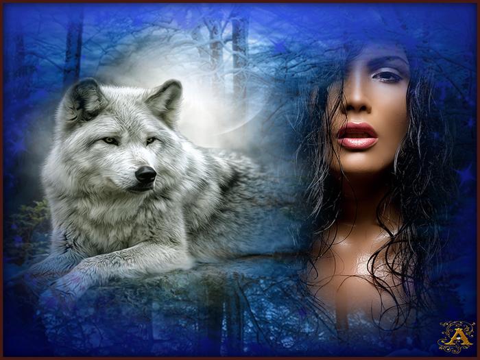 Одинокая волчица открытки, обхохочешься