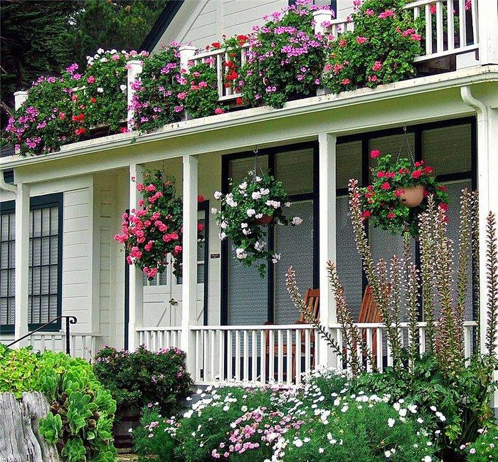 Как украсить фасад дома цветами