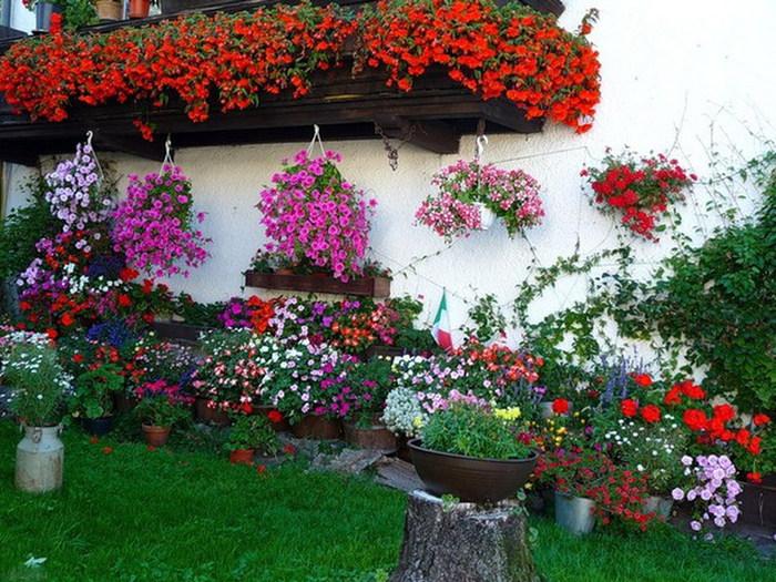 украшение двора цветами фото больше упрощают