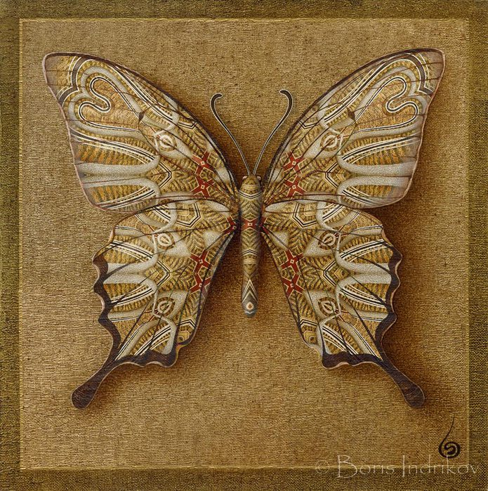 symbol_butterfly_2 (695x700, 187Kb)