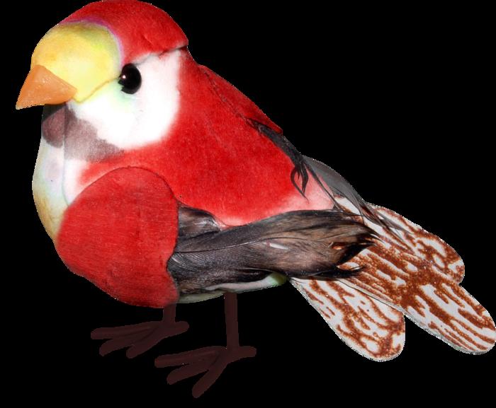 1368208743_ditab_bird1 (700x577, 386Kb)
