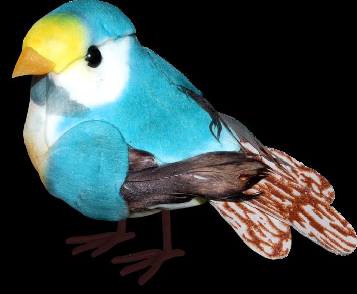 1368208908_ditab_bird2sh (700x577, 402Kb)