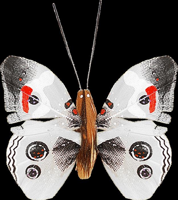 1368209019_ditab_butterfly1b (625x700, 526Kb)