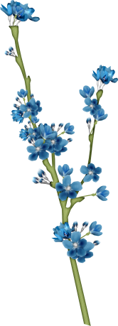 1368216112_blossom1 (166x459, 55Kb)