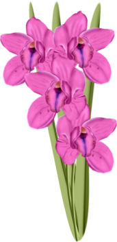 1368217082_flowers2 (171x353, 65Kb)