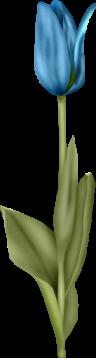 1368218189_tulip5 (96x358, 27Kb)