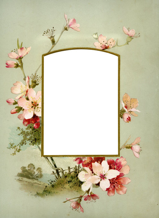 1368266052_Floral_Frame_No8_by_DustyOldStock (512x700, 72Kb)