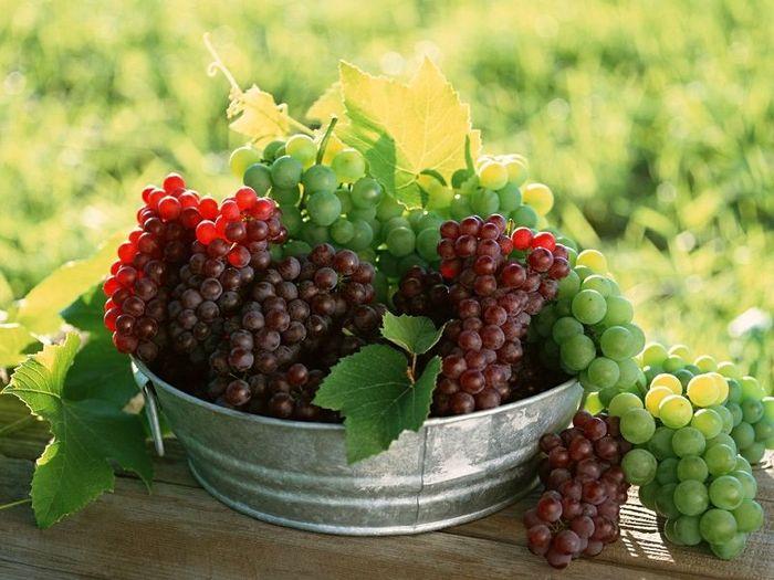 Натюрморты цветочно - фруктовые grapes_08 (700x525, 68Kb)