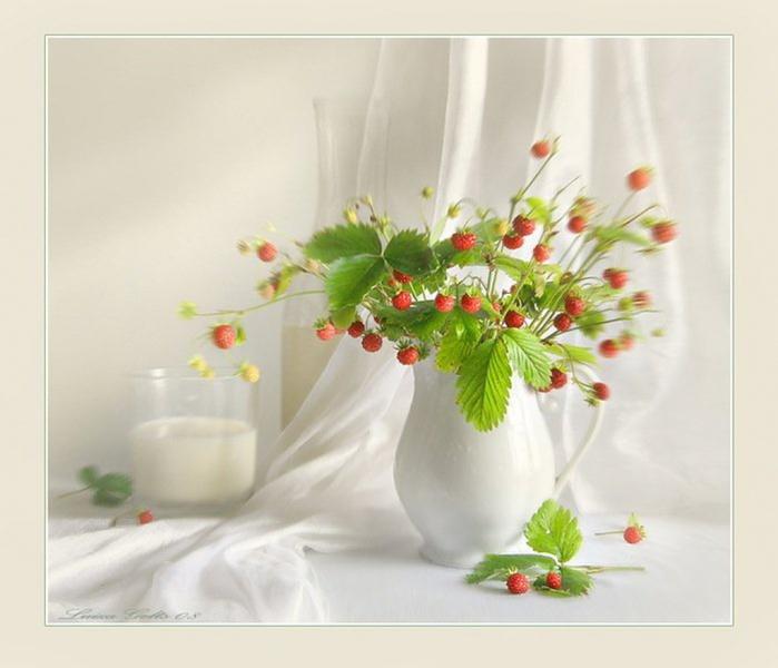 Натюрморты цветочно - фруктовые 8PMBPxk6 (700x600, 81Kb)