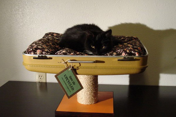 recycled-suitcase-ideas-pets-bed8 (600x400, 59Kb)